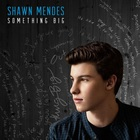 Shawn Mendes - Something Big (CDS)
