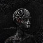 Nirnaeth - From Shadow To Flesh