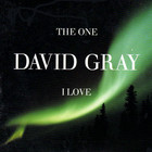 David Gray - The One I Love (CDS)