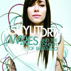 A Skylit Drive - Wires... and The Concept Of Breathing