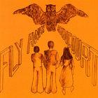 Fly Away (Vinyl)