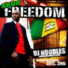 Akon - The Freedom Mixtape