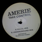 take control remixes (vinyl)