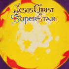 Andrew Lloyd Webber - Jesus Christ Superstar (Vinyl)