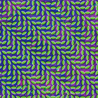 Animal Collective - Live (Merriweather Post Pavilion) (Live)