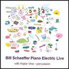 Bill Schaeffer - Piano Electric Live