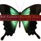 Bob Carlisle - Butterfly Kisses (Shades Of Grace)