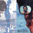 Brian Wilson - Landylocked