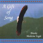 Brooke Medicine Eagle - A Gift of Song
