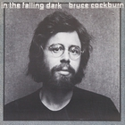 Bruce Cockburn - In the Falling Dark (Vinyl)