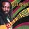 Bushman - Get It In Your Mind