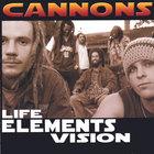 Life-Elements-Vision