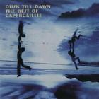 Dusk Till Dawn (The Best Of ...)