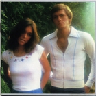 Carpenters - Horizon (Vinyl)