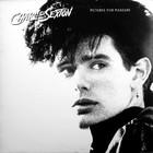 Pictures For Pleasure (Vinyl)