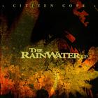 The Rainwater