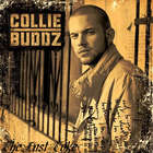 Collie Buddz - The Last Toke
