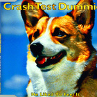 Crash Test Dummies - He Liked To Feel It