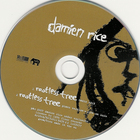 Damien Rice - Rootless Tree (single)