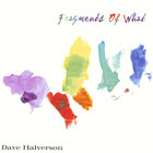 Dave Halverson - Fragments of What