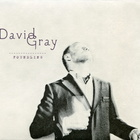David Gray - Foundling CD1