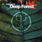 Essence Of Deep Forest