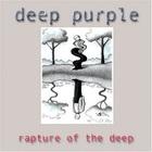 Deep Purple - Rapture Of The Deep CD2