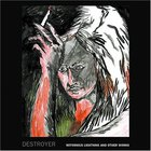 Destroyer - Notorious Lightning and Other Works (EP)