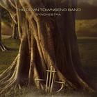 Devin Townsend - Synchestra1