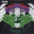 Dinosaur Jr. - In Session