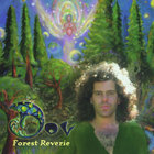 Forest Reverie