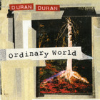 Duran Duran - Ordinary World (MCD)