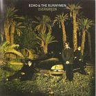 Echo & The Bunnymen - Evergreen