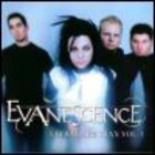 Evanescence - Ultra Rare Trax Vol,1