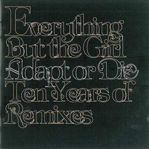 Adapt Or Die - Ten Years Of Remixes