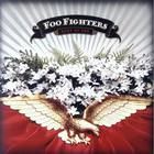 Foo Fighters - Best Of You (CDS)