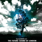Future Sound Of London - From The Archives Vol. 2