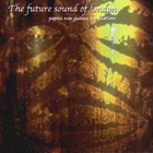 Future Sound Of London - Papua New Guinea Translations