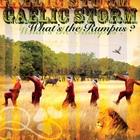 Gaelic Storm - What's The Rumpus?