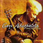 Gaye Adegbalola - Bitter Sweet Blues