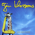 Gin Blossoms - Major Lodge Victory