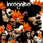 Incognito - Bees & Things & Flowers