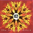 IQ - The Seventh House