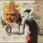 James LaBrie - Mullmuzzler 2