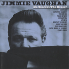 Jimmie Vaughan - Do You Get the Blues?