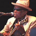 John Lee Hooker - The Gold Collection [Retro] CD1