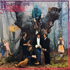 Kaleidoscope (UK) - Faintly Blowing (Vinyl)
