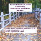 Biofeedback Meditations, Vol 2
