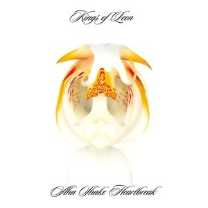 Aha Shake Heartbreak (Limited Edition) CD1