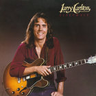 Larry Carlton - Sleepwalk (Vinyl)